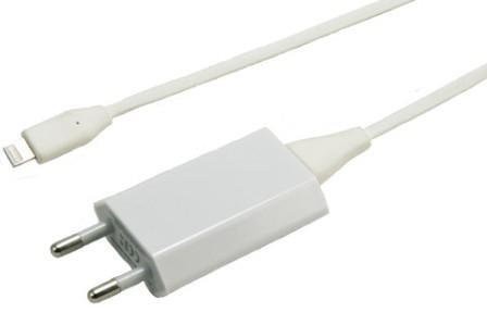 Зарядка iPhone от сети